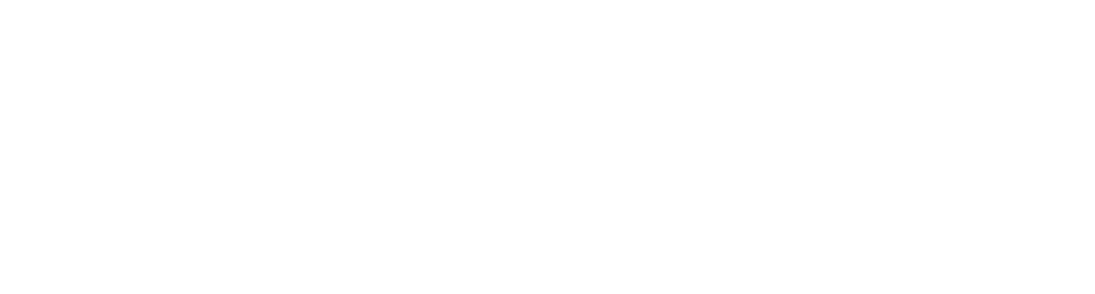 Delagoo logo wit